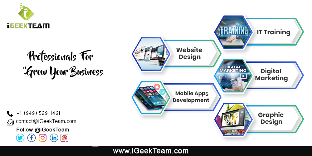 iGeekTeam Services and Expertise